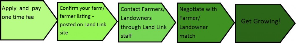 Land Link process arrows